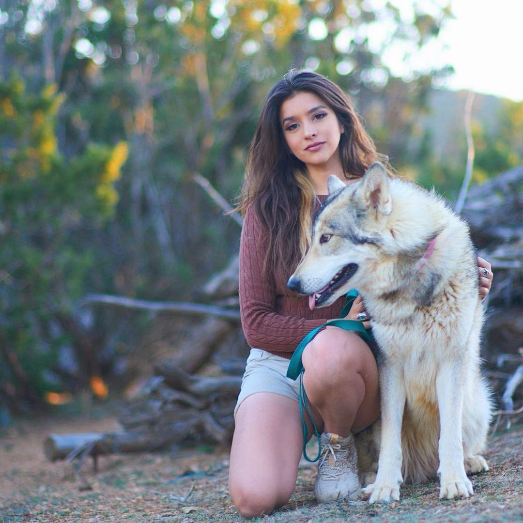 投身动物保护事业!安佳丽Ins晒自己与狼狗的合照