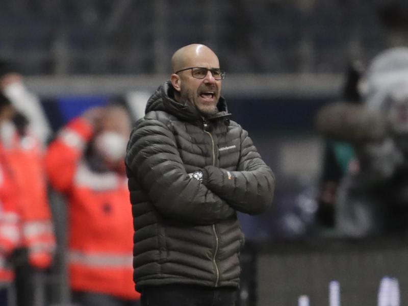 博斯:我觉得拜仁这个赛季还会输掉更多竞赛