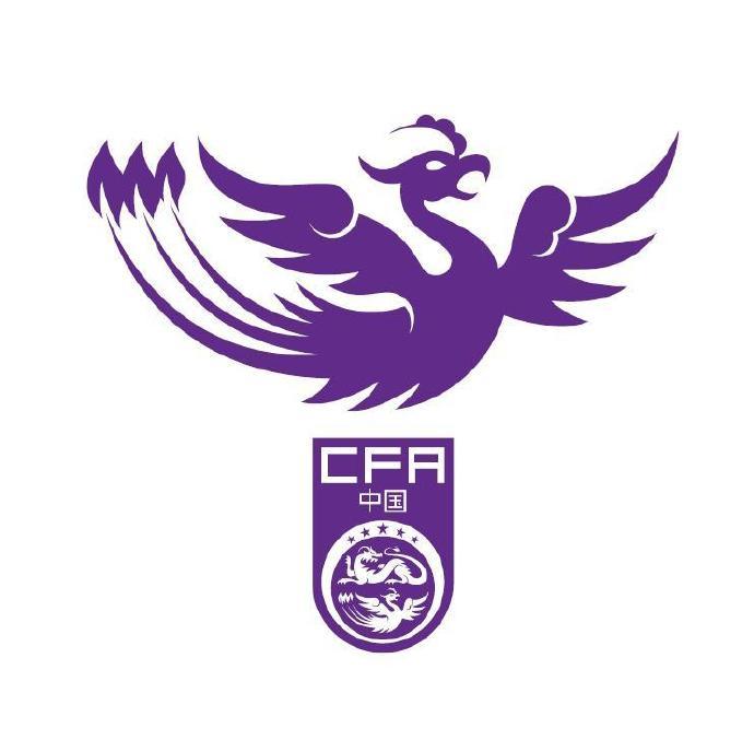 凤凰腾飞!FIFA女足排名更新:中国升至第14,亚洲排名第4