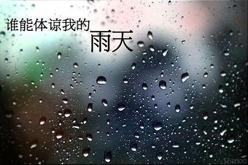 连个一起淋雨的人都找不到