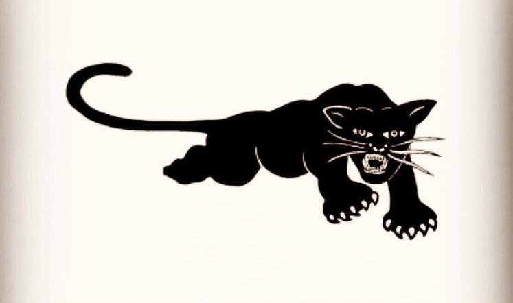 欧文晒黑豹卡通图案,祝已故黑豹演员博斯曼44岁生日快乐