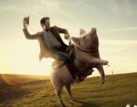 真骑猪走天涯