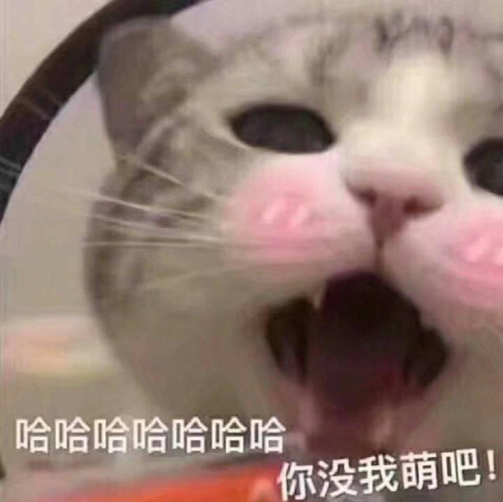 小野桃子酱