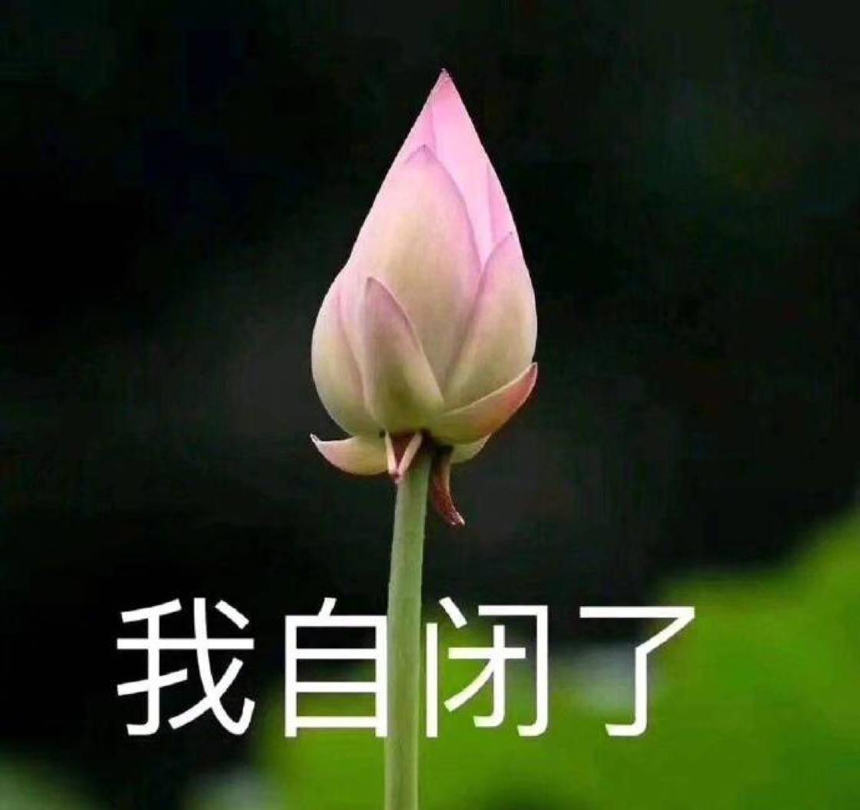 青梨April