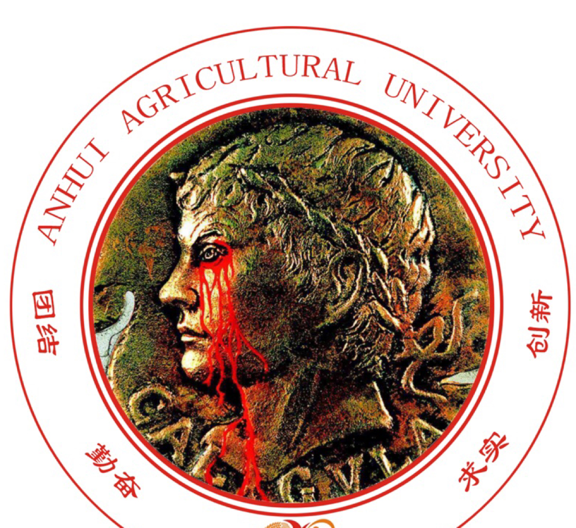 王大仙1993