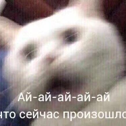 蕾米莉亚斯卡蕾特