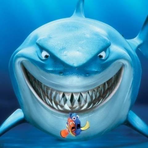 小鲨鱼GG