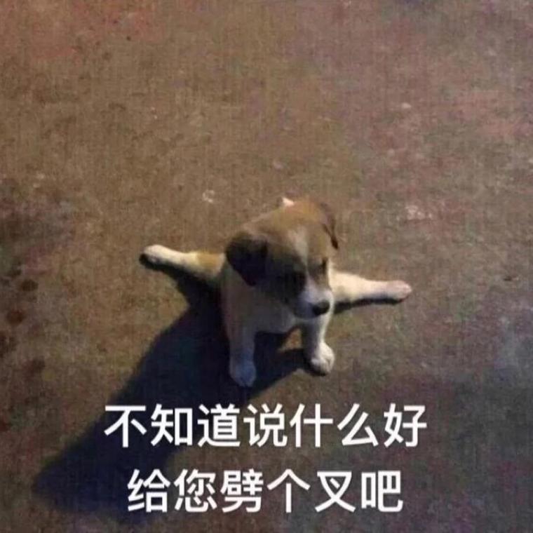 河工大刘德华