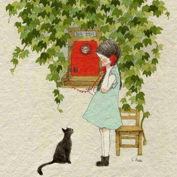 小猫猫喵喵喵