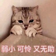 阿磊是寂寞