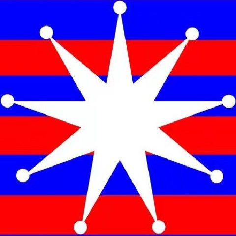 达尔马提亚之星