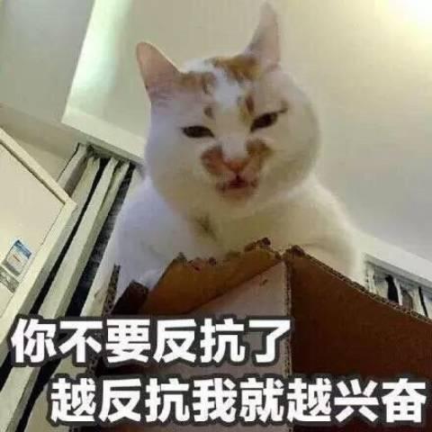 Ye蒲Online