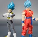 SSGSS丶Goku