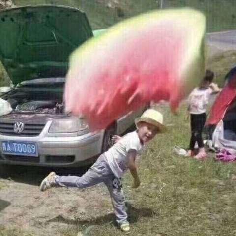 西红柿抄翔