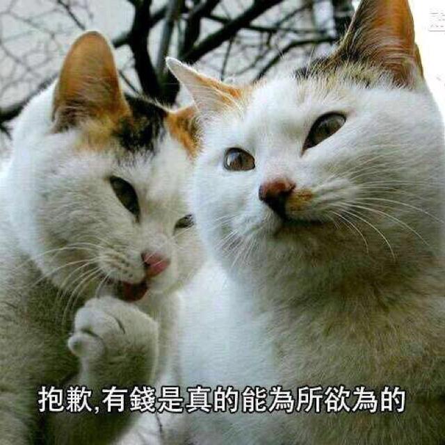 民国大总统黄思密达