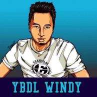 windy313
